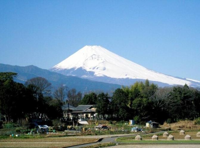 ホテル近くより真冬の富士山を望む