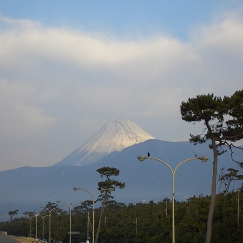 千本浜(沼津)週末はサイクリスト&ランナーでいっぱい