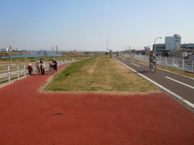 江戸川河川敷遊歩道