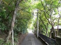はけの道/当館より徒歩約20分