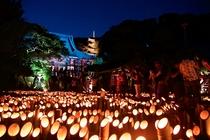 龍口寺の竹灯篭