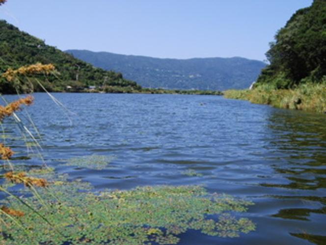 井の浦の池