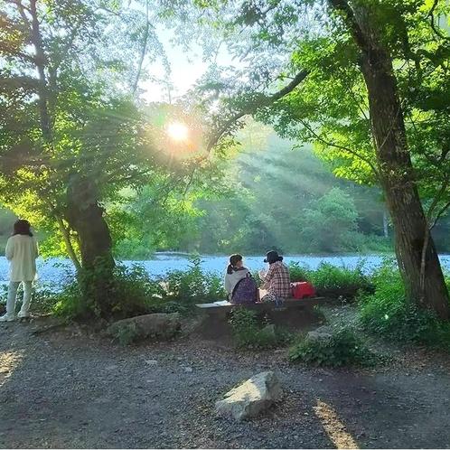 白樺荘前 朝の陽ざし