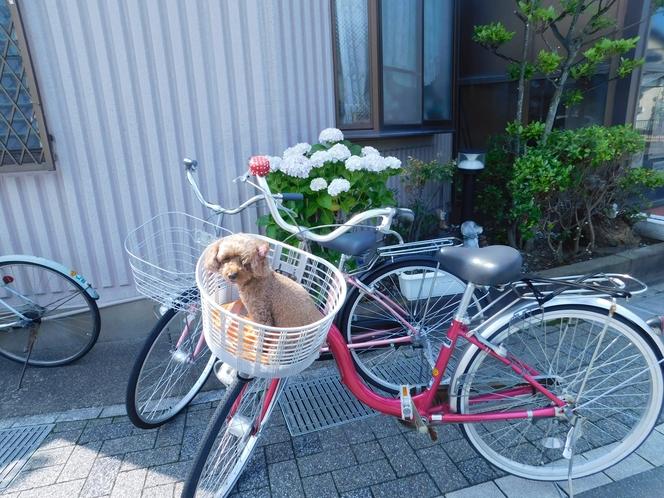 自転車貸出中(要予約)