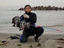 社長素潜り漁で石鯛ゲット!
