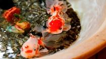 フロント横で優雅に泳ぐ菊萬アイドルの金魚達