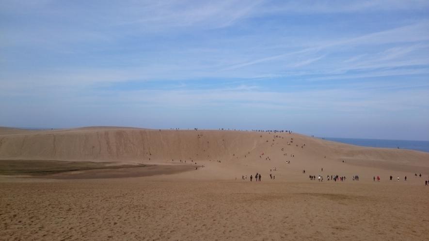<周辺・景観>鳥取砂丘