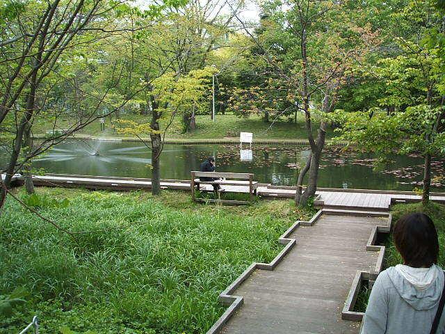 北大構内 池