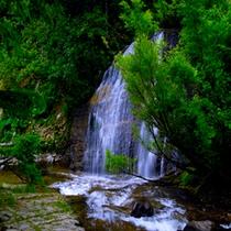 黄金岩の滝