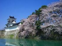 ☆観光:桜の季節も魅力的な富山城