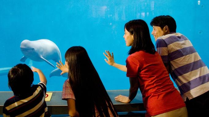 """【鳥羽水族館チケット付きプラン】飼育種類""""日本一""""「鳥羽旅」のファミリーみんなの思い出作りに◎"""