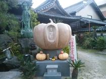かぼちゃ寺。