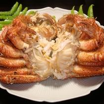 *【毛ガニ】しっかりした身と濃厚な味噌!石川県産の地物です。