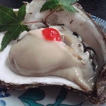 *【天然の岩ガキ】大粒でクリーミー♪夏の味覚をご賞味ください