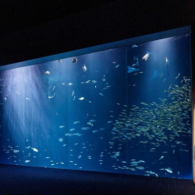 香川県へおいでまい★四国水族館の入館チケットと和朝食も付いてお得な讃岐旅★