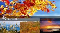 ■天空の自然美-標高625m-■【秋】