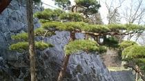 ◆盛岡城の石垣