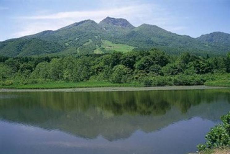 夏いもり池からの妙高山