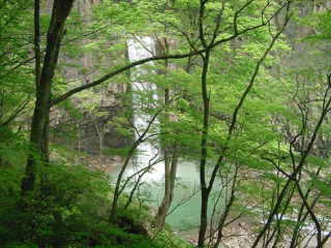 苗名滝(日本の滝百選)