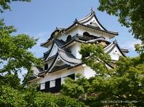 国宝・彦根城(雄山荘から車で約75分)