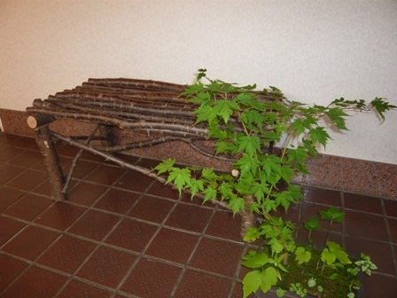 桜の木の椅子
