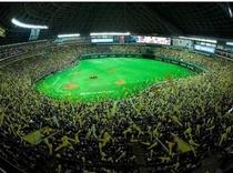 ■ヤフオクドーム(野球)■
