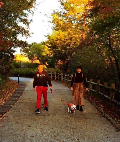 愛犬と散歩イメージ④