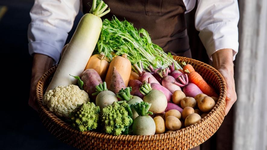 <食材・新鮮野菜>となみ野農家の畑直送