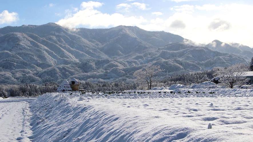 <里山・冬>雪景色