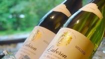 フランス産ワインボトル