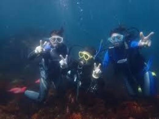 【スキューバダイビング体験】1泊3食付  城ケ崎の海は水が澄んで魚が一杯