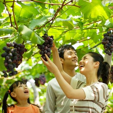 【うきはの果物祭り★フルーツ狩り】もも・ブドウ・梨・柿狩りを楽しむ!お一人様1キロづつをお持ち帰り♪