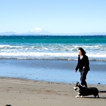 波穏やかな鱚ヶ浦海岸散歩がおすすめ