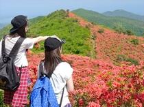 【 徳仙丈 】 頂上からの眺め