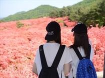 【 徳仙丈 】 第一展望台からの景色
