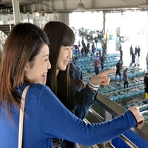 【 港町散歩 】 魚市場見学の様子