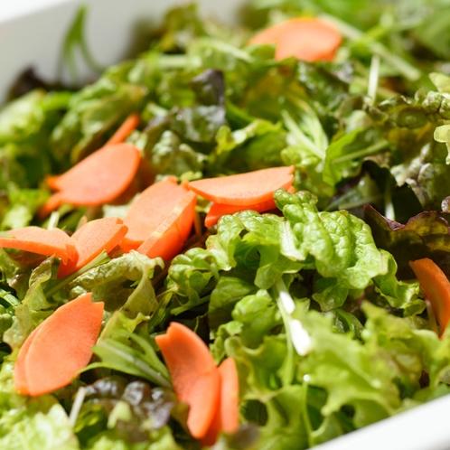 【朝食】フレッシュ!グリーンサラダ