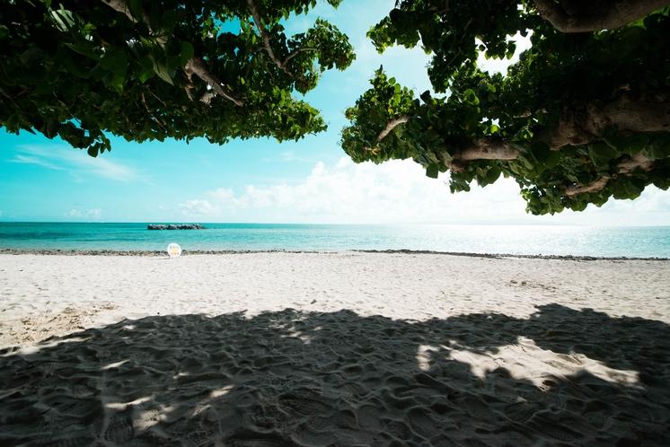 カイジ浜(星の砂)