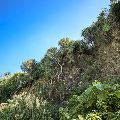 自然豊かな浜比嘉島