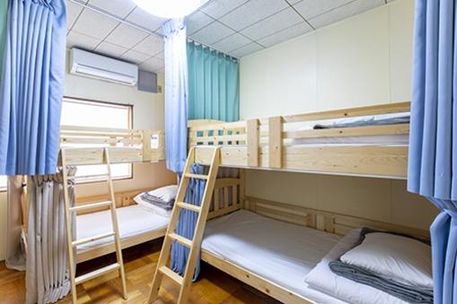 ベッド1台【男女共用ドミトリー(2階・2段ベッド2台)】