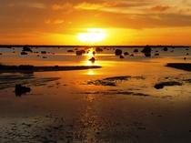 【周辺】佐和田の浜夕日。遠浅の浜に夕日が美しく映ります。