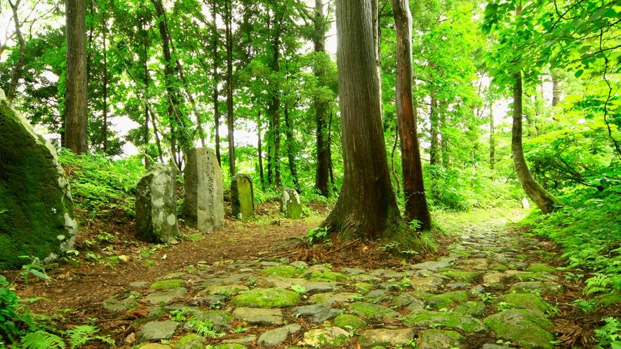 【大自然】歴史ある古道を歩き、澄んだ空気と深緑を楽しむ旅はいかがでしょうか