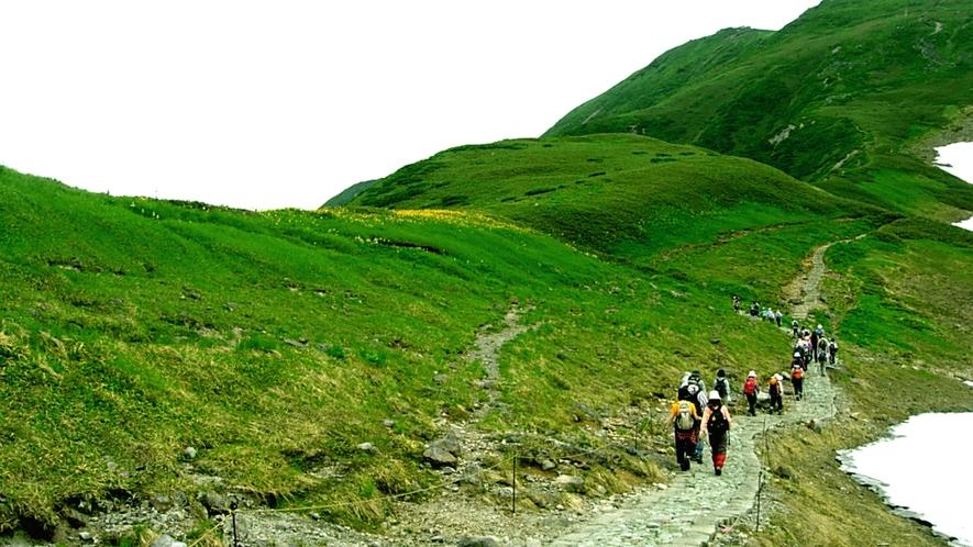 【大自然】周辺にはトレッキングや登山に人気の山々が多数ございます。