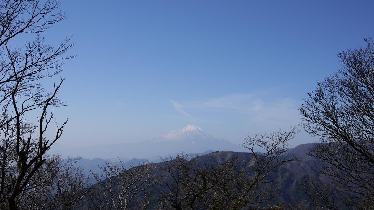 *[大山山頂]関八州の展望台と言われる山頂は、相模湾、富士山、都心の高層ビル群などを望めます。