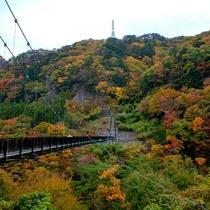 ■楯岩大吊橋