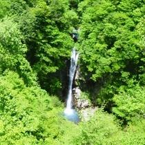 新緑の駒止の滝