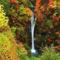 紅葉の駒止の滝