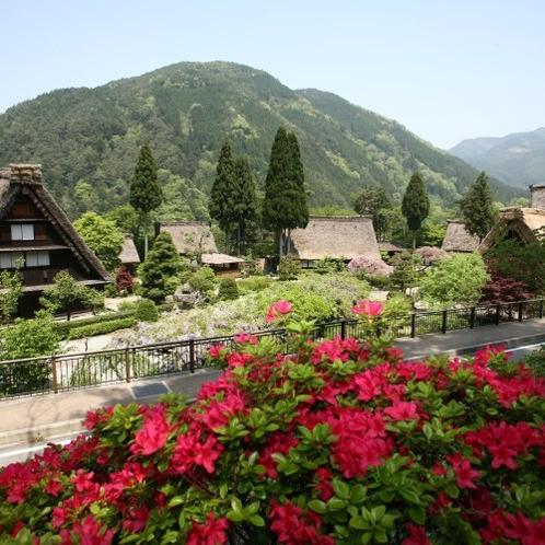 ◆【春の下呂温泉合掌村】たくさんの花が楽しめる春の合掌村