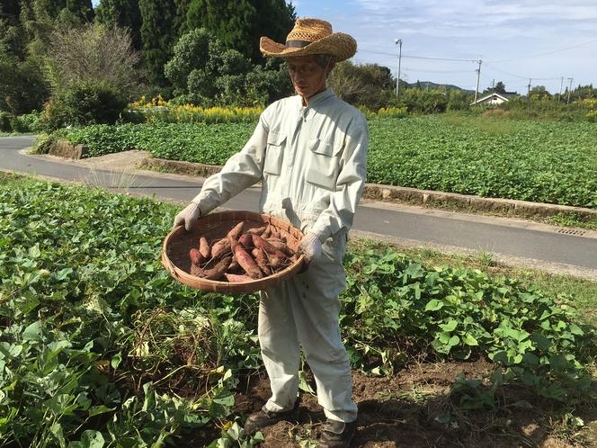 さつまいもの収穫体験(お持ち帰り付1000円)