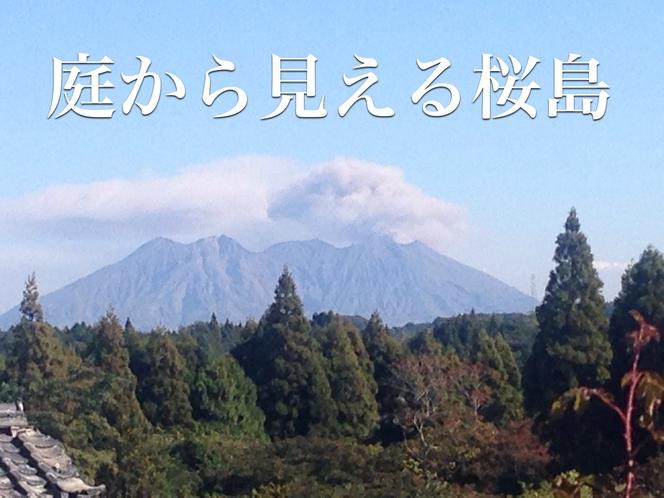 庭から見える桜島